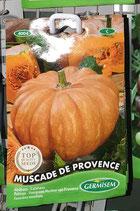 """Potiron """"Muscade de Provence"""""""
