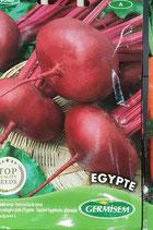 "Betterave ""Egypte"""