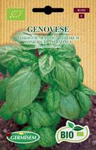 """Sem. Basilic """"Genovese"""" Bio"""