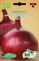 """Oignons """"Amposta Bio"""""""