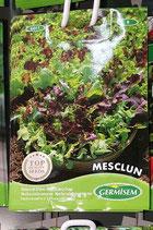 """Mesclun """"Salade composée"""""""