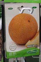 "Melon ""Galia F1"""