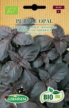 "Sem. Basilic ""Purple Opal"" Bio"