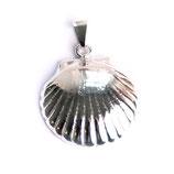 pendant scallop burgos, 925 silver