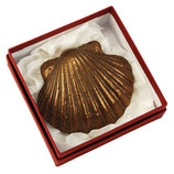 Jakobsmuschel aus Bronze