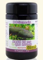 NADH 20mg & Q10 100mg für müde, demente Zitteraale - DOGenesis von Robert Franz  60 Kapseln
