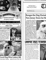 TLT_550_C6704_Dog_Newsprint
