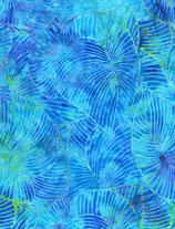 TLT_Bat_586_Tonga_B7784 Reef