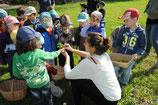 Kräuterworkshop für Kinder