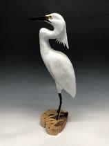 Lance Lichtensteiger, Egret