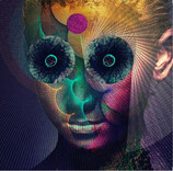 Dir en Grey -  The Insulated World