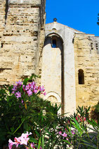 Visite Cathédrale + Salines à cheval + Dégustation de vin