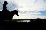 Visite Cathédrale + Salines à cheval