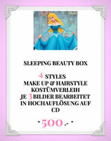 Sleeping Beauty Box