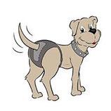 Rubi Care Hundeschutzhose