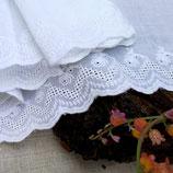 1 Meter MADEIRA   105 mm 100% bestickte Baumwolle/Weiß