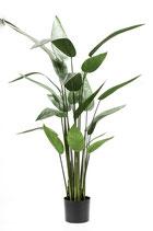 Heliconia kunstplant.