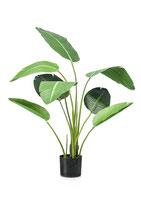 Strelitzia kunstplant.