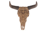 Polyresin cow skull