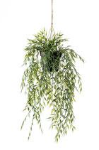 Bamboo hangplant 50 cm