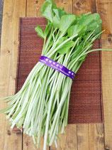 無農薬わさびの厳選茎 1kg