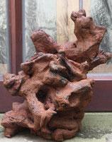 La Piedra de los terrestres