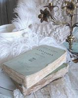 Antikes französisches Buch