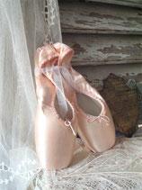 Zauberhaftes Paar Ballettschuhe / Spitzenschuhe