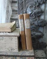Set alter französischer Bücher mit Papiereinband Frankreich