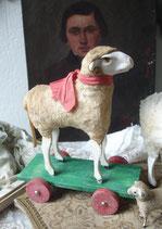 RAR: Großes altes Wollschaf