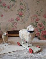 RAR: Altes süßes Wollschaf auf Rollen