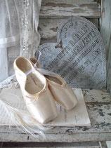 Ballettschuhe / Spitzenschuhe