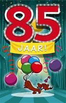 85 jaar