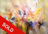 Colour Breeze XL1 / SOLD