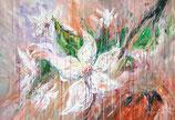 White Blossoms XL 1