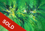 Green Adventure XL 2 / SOLD