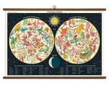 """Vintage Poster Set extra groß mit Holzleisten (Rahmen) und Schnur zum Aufhängen,  Motiv """"Constellations - Tierkreiszeichen"""""""
