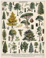 """""""Wald - Bäume"""" Cavallini Vintage Puzzle"""