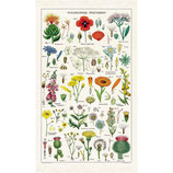 Vintage Wildblumen - Wildflowers Geschirrtuch (Cavallini Papers & Co.)