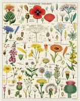 """Wildblumen"" Cavallini Vintage Puzzle"