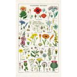 Vintage Wildblumen - Wildflowers Geschirrtuch (Cavallini Papers & Co.)