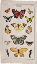 Schmetterlinge Geschirrtuch (Cavallini Papers & Co.)
