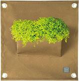 The Green Pockets - Pflanztaschen 40 x 50 cm