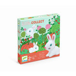 Toddler Spiele: Little collect - Sammelspiel von DJECO