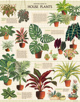 """House Plants - Zimmerpflanzen"" Cavallini Vintage Puzzle"