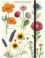 "Cavallini Notizbuch, Notebook ""Wildflower - Wildblumen"""