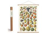 """Vintage Poster Set mit Holzleisten (Rahmen) und Schnur zum Aufhängen, Motiv """"Früchte, Obst"""" (von Cavallini)"""