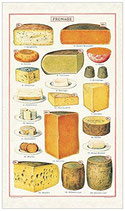 Vintage Käse, Fromage Geschirrtuch (Cavallini Papers & Co.)