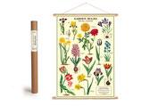 """Vintage Poster Set mit Holzleisten (Rahmen) und Schnur zum Aufhängen, Motiv """"Frühlingsblumen"""" (von Cavallini)"""