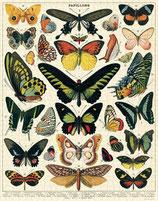 """""""Butterflies - Schmetterlinge"""" Cavallini Vintage Puzzle"""